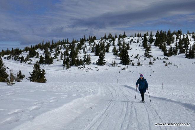 Schneeschuh Wege auf der Rax
