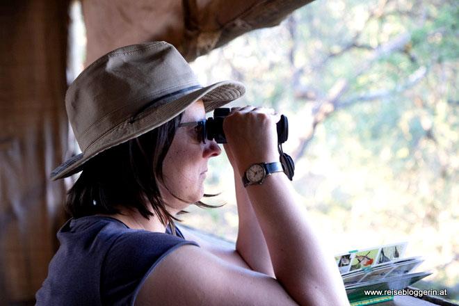 Birdhide in Südafrika