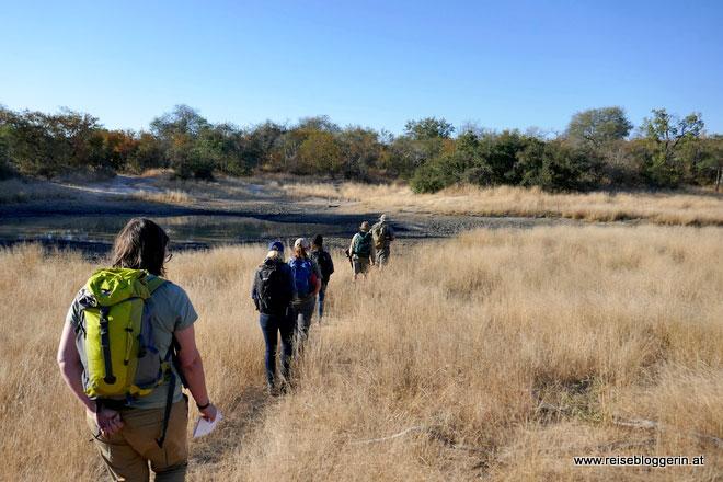 Bushwalk in Südafrika