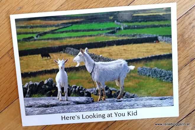 Eine Postkarte aus Irland mit Ziegen