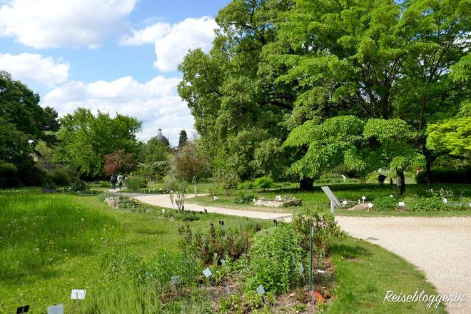 Wien - Der Botanische Garten