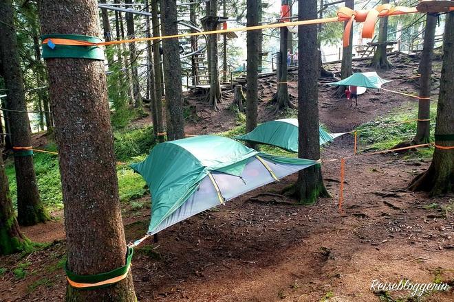 Zelte sind zwischen Bäumen gespannt