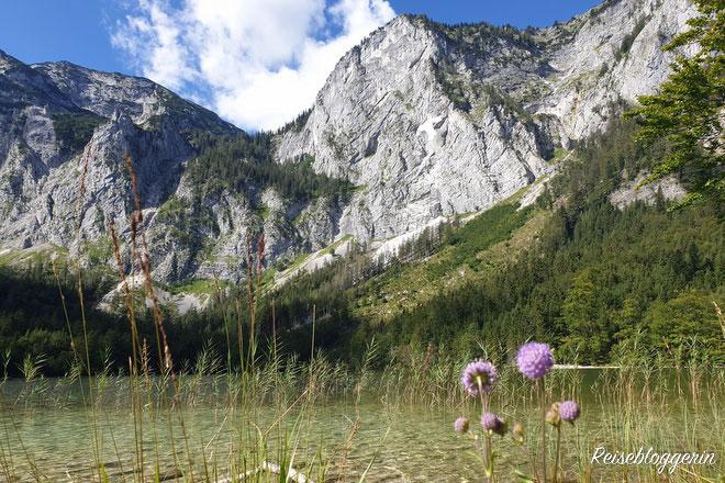 Hintere Langbathsee mit Bergpanorama
