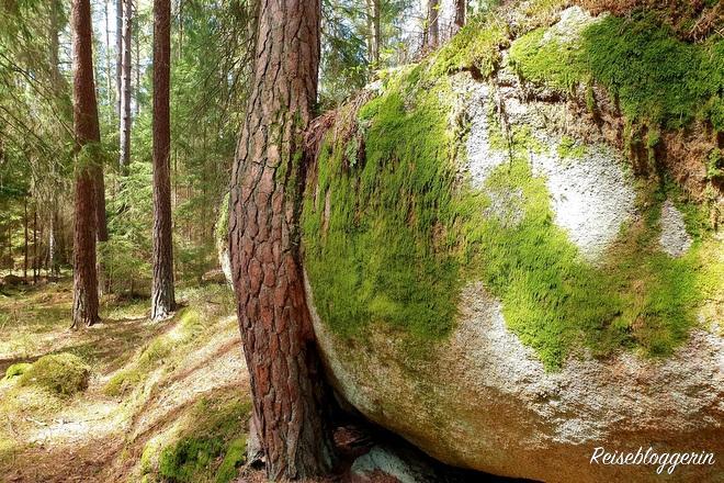 Granitstein mit Moos überwachsen