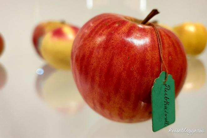 Steirischer Apfel