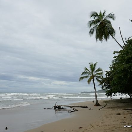 Playa Chiquita in Costa Rica